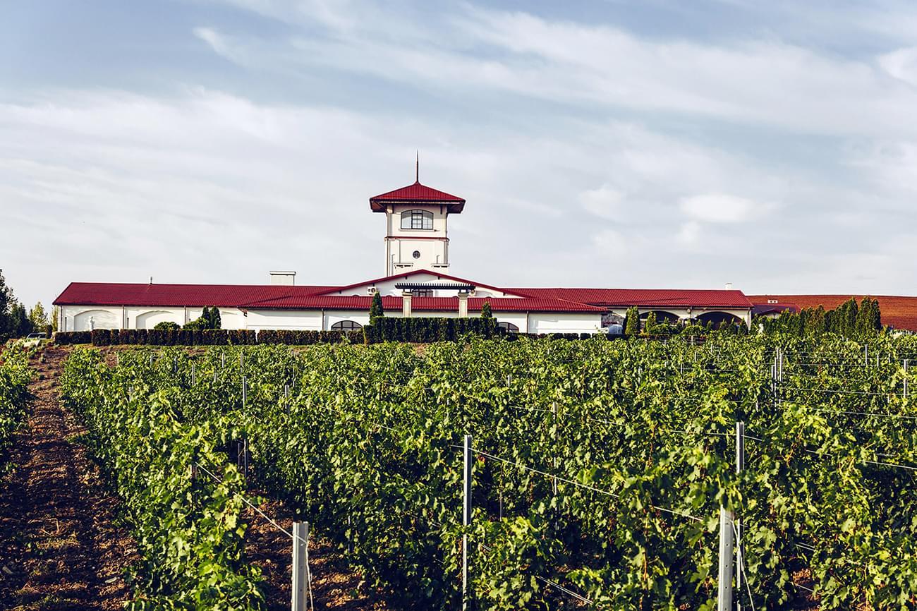 """Винодельня """"Долина Лефкадия"""" на экскурсии от Экскурсионного бюро """"Captour"""""""